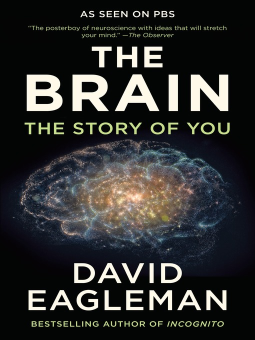 The-Brain-The-Story-of-You